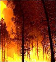 Πυρκαγιές σε Χίο, Ασπρόπυργο, Μενίδι