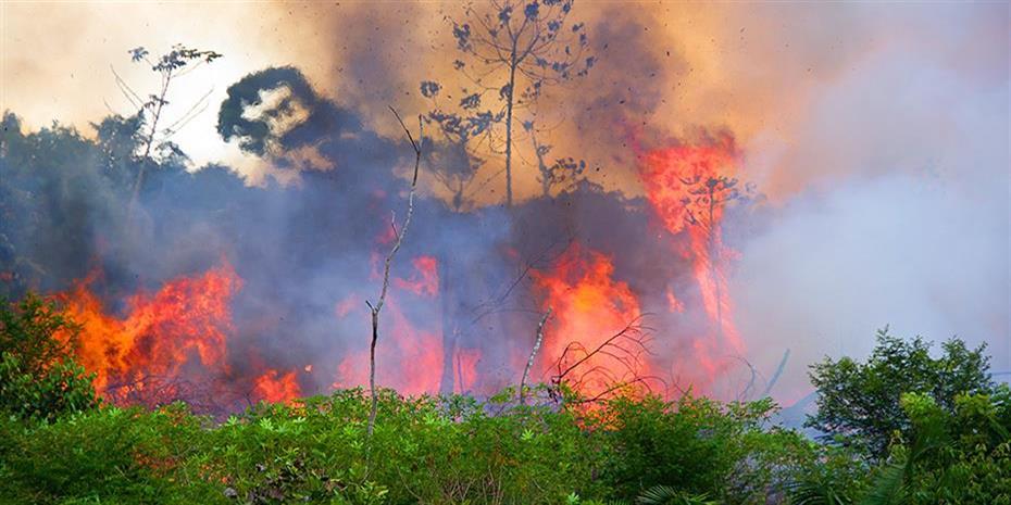 Φωτιά στην Αιγιαλεία: Ενεργοποιήθηκε το Copernicus