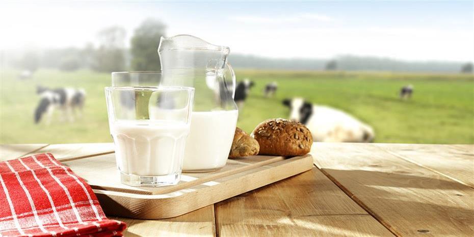 Δωδώνη: Νέοι συσχετισμοί δυνάμεων και deals μετά τη συμφωνία CVC-SI Foods