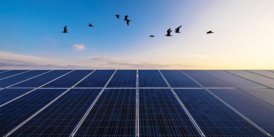 Mytilineos: Ξεκινά κατασκευή φωτοβολταϊκών 140 MW