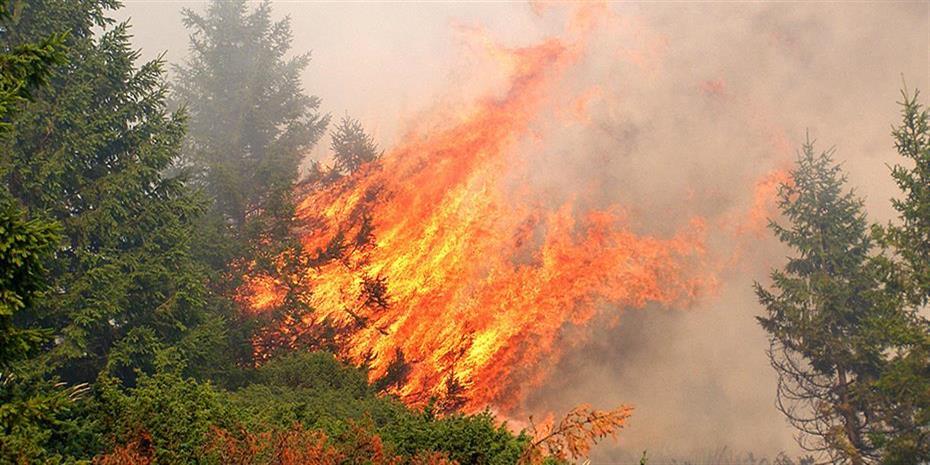 Κατάσβεση φωτιάς στο Μπαλί Ρεθύμνου