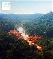 Πώς το οργανωμένο έγκλημα αποψιλώνει τον Αμαζόνιο!